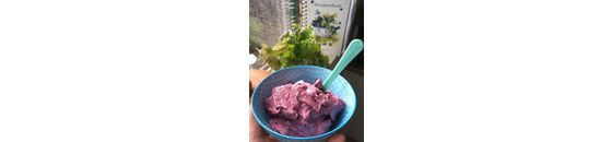Forest fruits Coconut ice cream