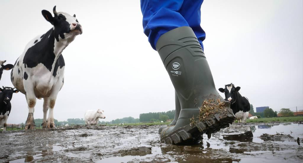 5 raisons pour lesquelles les agriculteurs ont besoin de bottes de travail de qualité