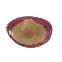 Partychimp - Sombrero