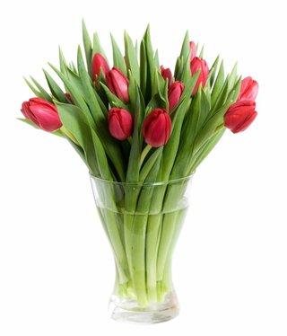 Blumenstrauß rote Tulpen