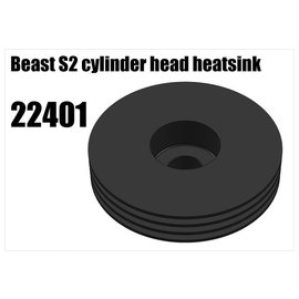 RS5 Modelsport Beast S2 cylinder head heatsink