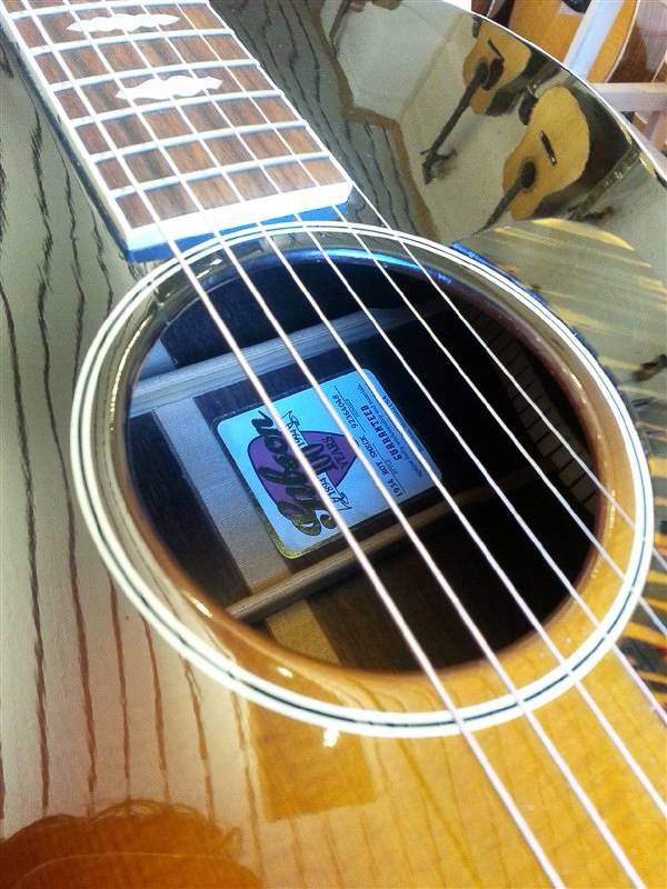 Gibson Gibson Roy Smeck Radio Grande