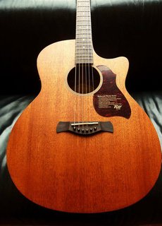 Richwood Richwood G-50CE Grand Auditorium w/Fishman
