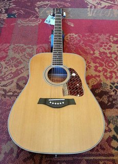 Richwood Richwood RD-17 C Dreadnought