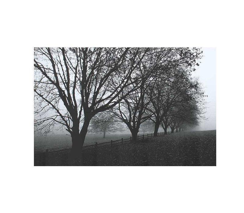 Canvas Landschap zwart/wit