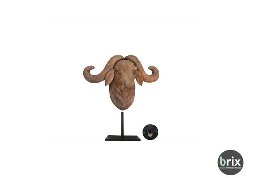 Brix Bull Small Bruin