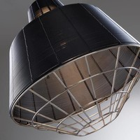 DARWIN Hanglamp Metaal Zwart