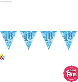 Pioneer Balloon Company Flag Banner - Age 18 Blue Sparkle