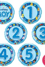 Birthday Boy Mini (Ages 1 to 5)