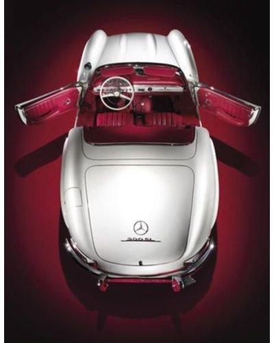 Exhibitions International EXH INTL CORE Mercedes-Benz 300 SL Book, STAUD