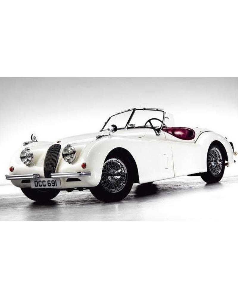Exhibitions International EXH INTL CORE The Classic cars book, Staud