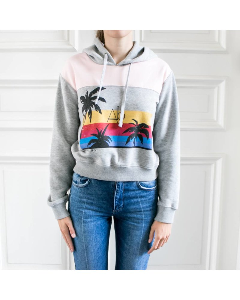 Anine Bing Hawaii hoodie
