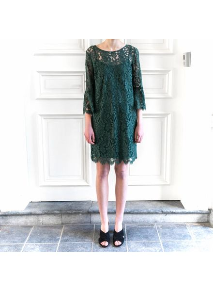 SET Lace dress with trompet sleeve - Green