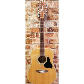 Crafter Crafter MD-50-12 12 string