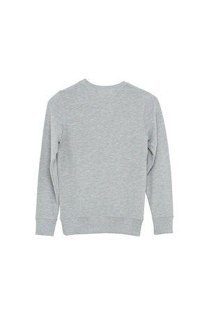 I dig Denim Wayne sweater grey melange