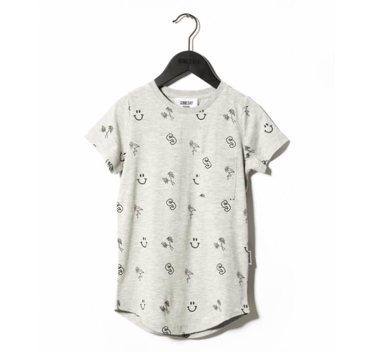 Someday Soon River t-shirt grey melange