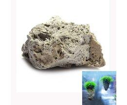 Decoração Aquarium Avatar Pedra Pumice