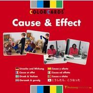 Causes et conséquences ColorCards®