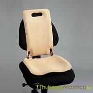 Combinaison d'assise et de soutien du dos Backfriend