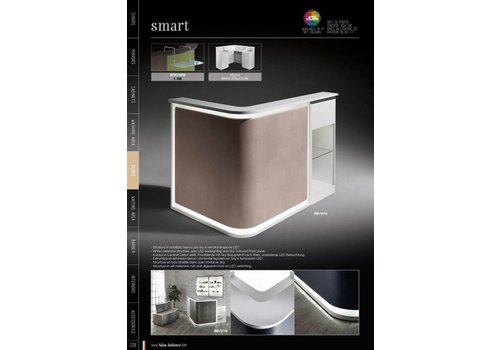 Salon Ambience SMART WIT RECEPTION,SKY PANEL,CABINET+DISPLAY CABINET