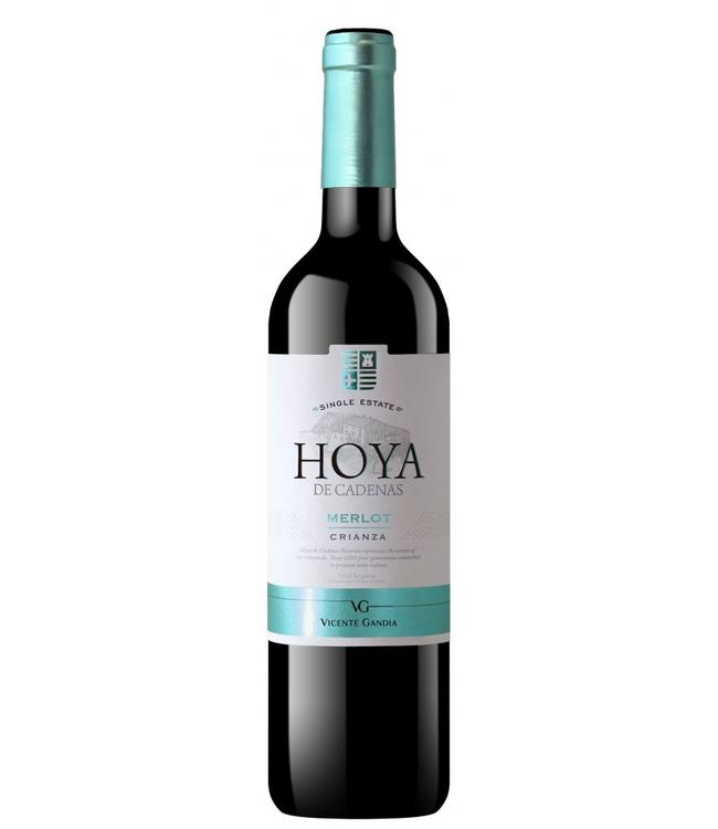Hoya de Cadenas Merlot Crianza DOP 2014