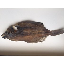 Kiezebrink Dried Flatfish 3 pieces