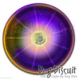 FlashFlight DogDiscuit LED Flying Disc - Disc-o LED