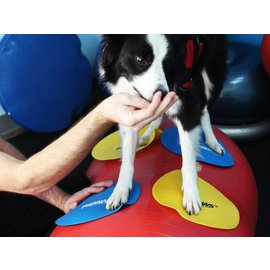 FitPaws Targets (4 pieces)