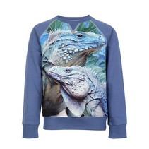 Wild kidswear jongens sweater Jake iguana
