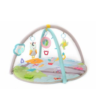 Taf Toys Taf Toys Musical nature bébé gym