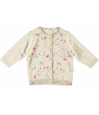 Name-it Name-it meisjes cardigan Dajette