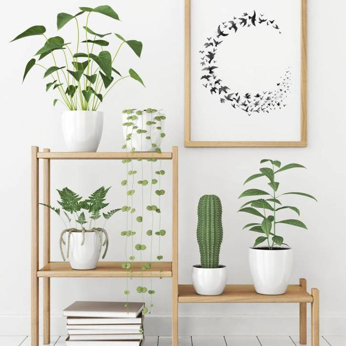 Interieur posters