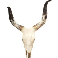 Homestead Cow Skull Wall Decor Large