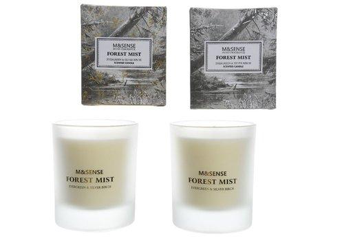 Homestore Scented Candle - Evergreen & Silver Birch