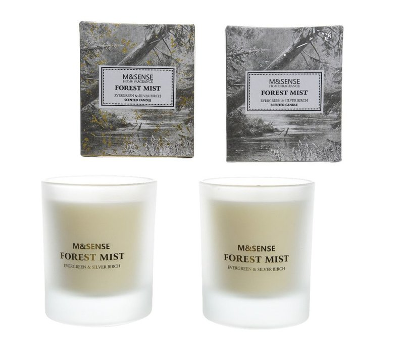 Scented Candle - Evergreen & Silver Birch