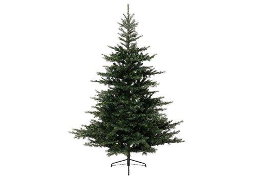 Homestore Grandis Fir Christmas Tree 210cm (7ft)