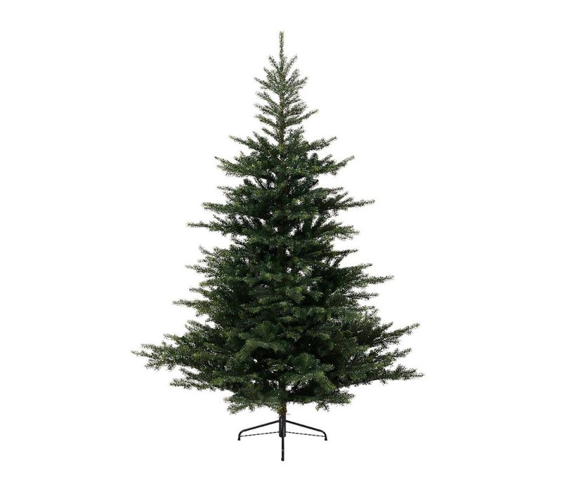 Grandis Fir Christmas Tree 210cm (7ft)