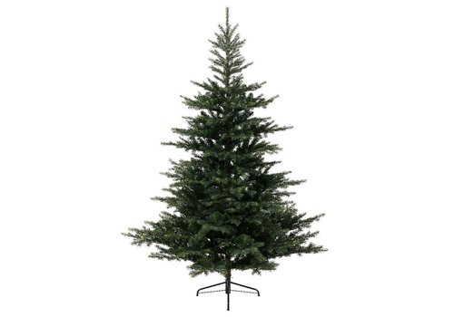 Homestore Grandis Fir Christmas Tree 300cm (10ft)