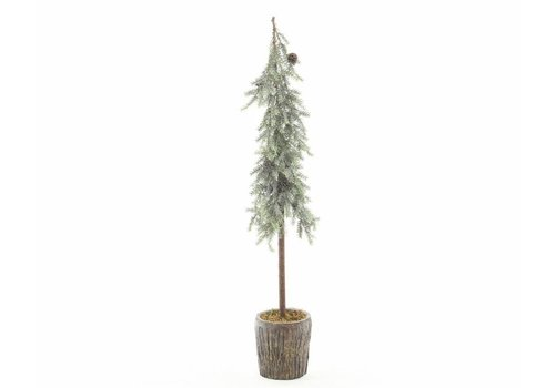 Homestore Frosted alpine mini tree with pinecones in pot