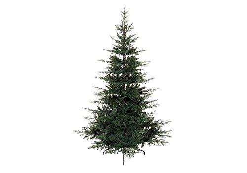Homestore Greenwich Fir Christmas Tree 210cm (7ft)