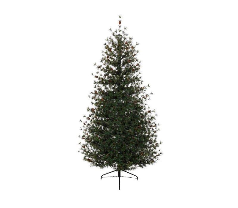 Carolina Fir Christmas Tree 210cm (7ft)