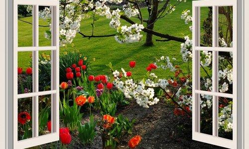 Garden Centre Cork - The Pavilion Garden Centre - The Pavilion