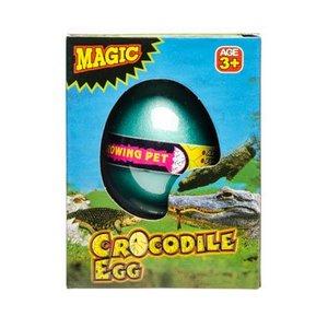 Groei-ei Krokodil ( Voorraad: 89 stuks OP=OP)