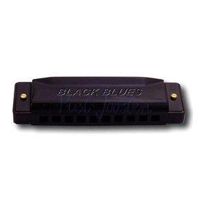 Hering 6020-A Black Blues Mondharmonica