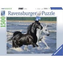 Paarden op t' strand (1500)