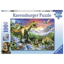 Bij de Dinosaurussen (100 XXL)