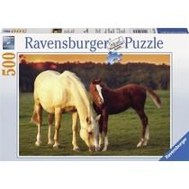 Mooi paarden puzzel (500)