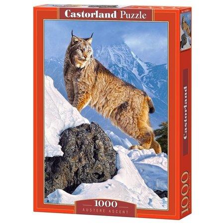 Castorland Austere Ascent (1000)