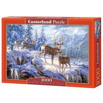 Winter Mountain Light (1000)