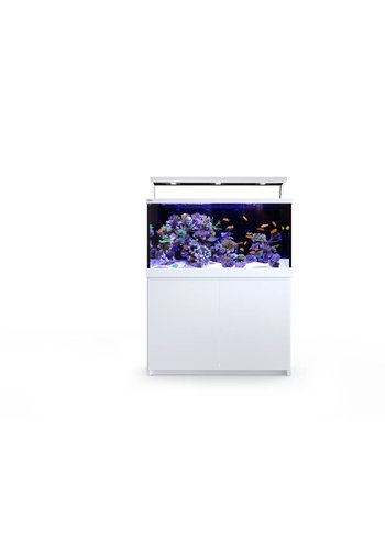 Max S 500 LED Complete Reef System - wit